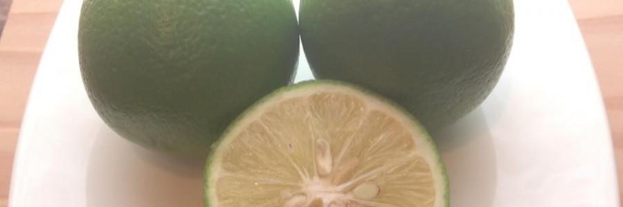 自然栽培レモン 激ウマ!!!